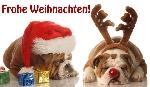 Informationen ber grukarten for Kostenlose weihnachtskarten versenden